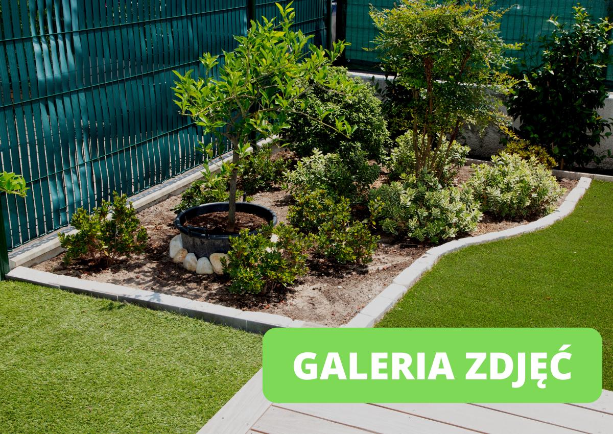 Aranżacje ogrodu przed domem zdjęcia - Jak urządzić ogród przed domem?