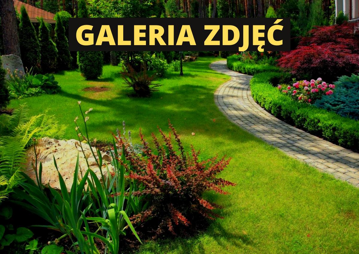 Ogrody przydomowe na wsi - Galeria zdjęć ogrodów