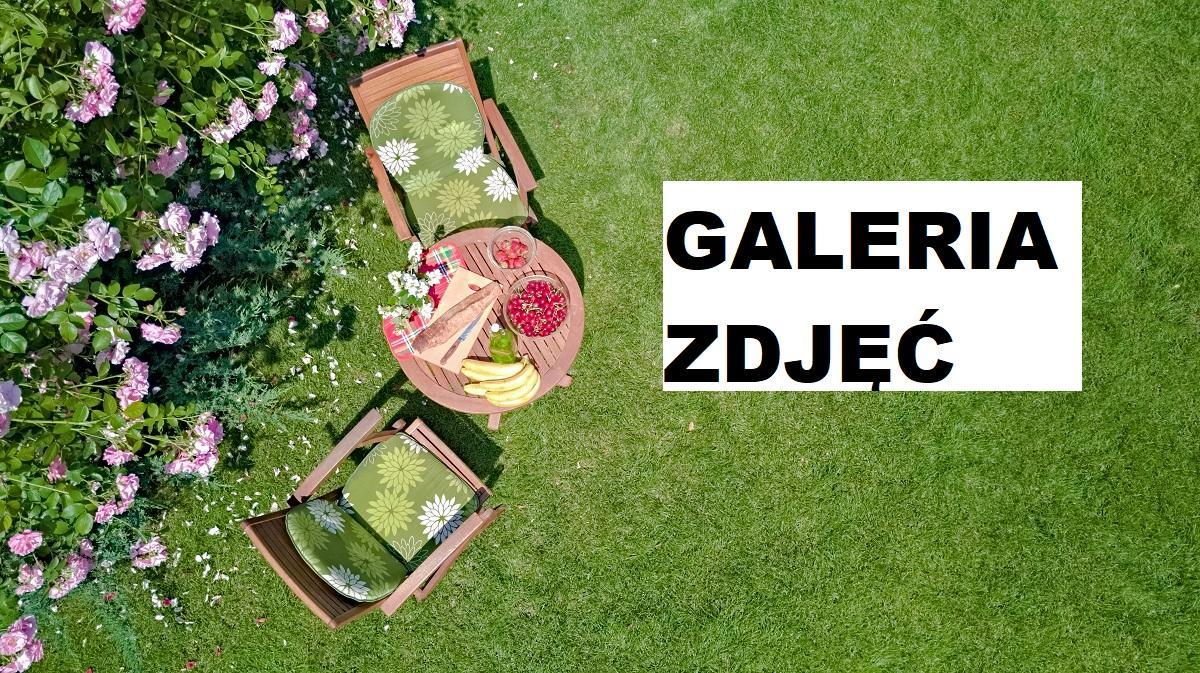 Piękne ogrody przydomowe zdjęcia