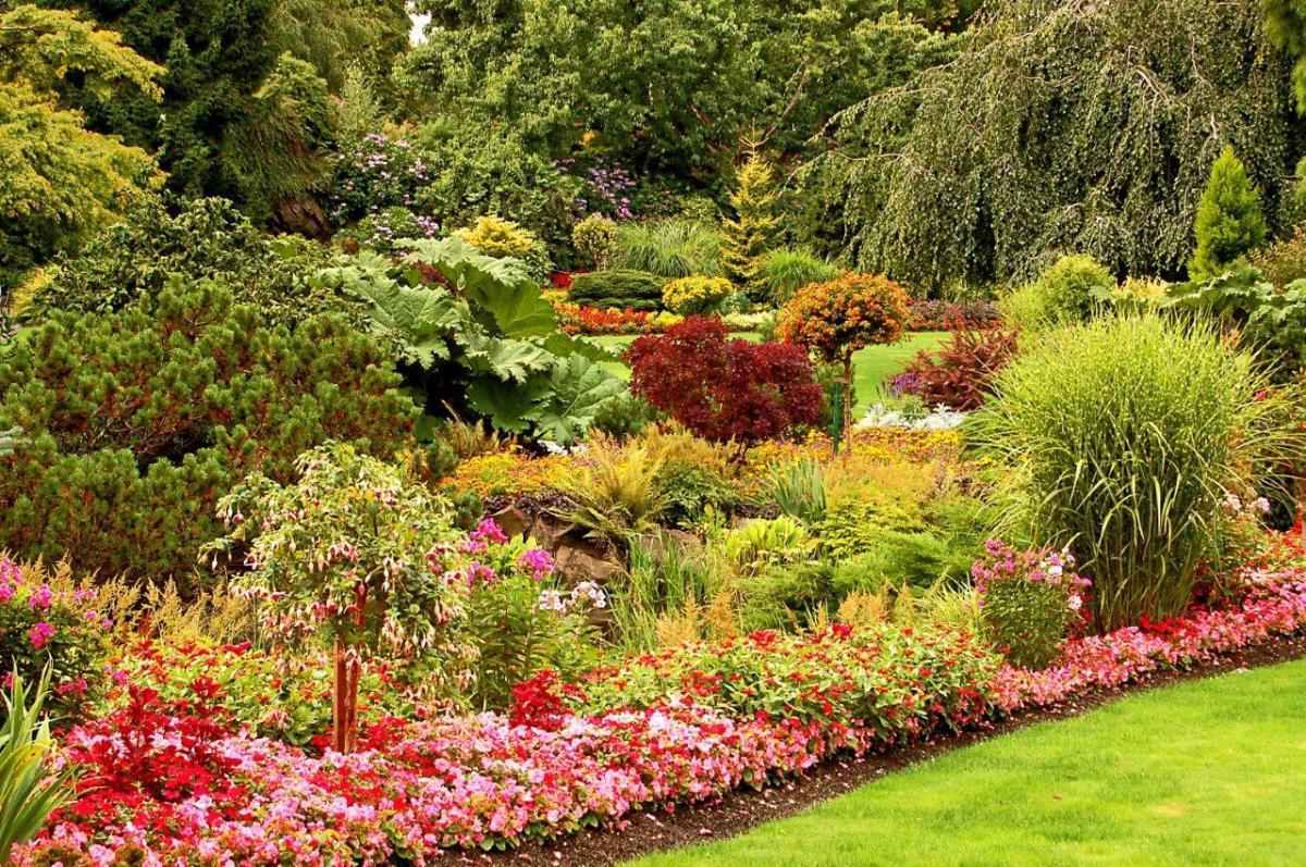 Propozycje na kompozycje kwiatów i krzewów w ogrodzie. Zapadną w pamięć!