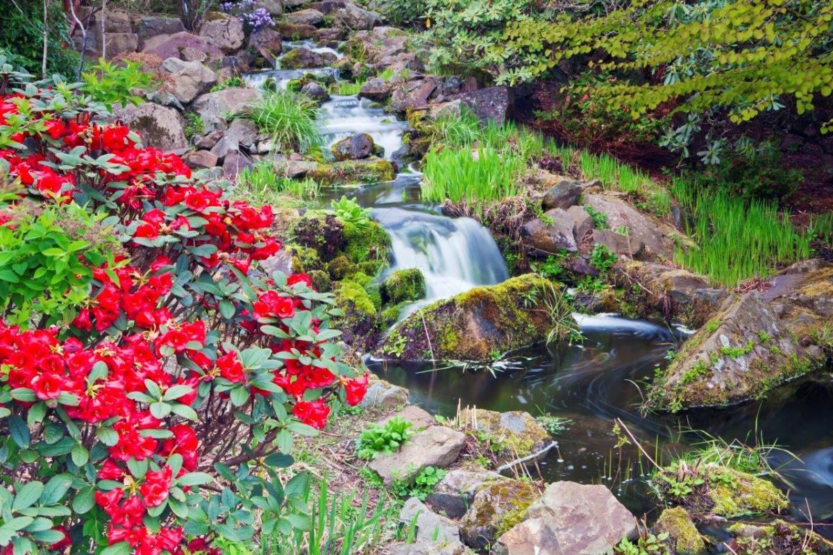 Sztuczny strumyk w ogrodzie - Bajeczne strumienie do ogrodu